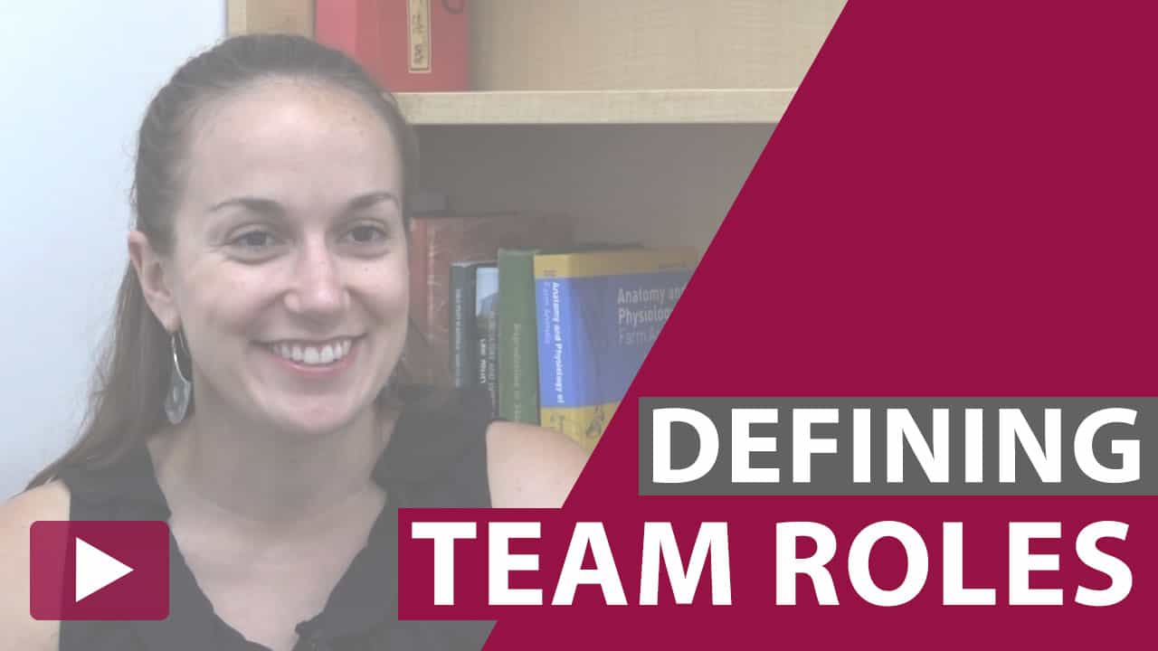 defining team roles video thumbnail